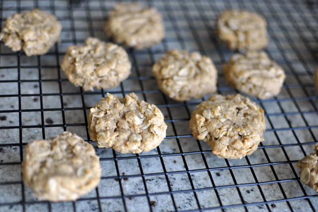 Post image for Oatmeal Peanut Butter Cookies
