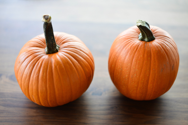 Post image for Fresh Pumpkin Puree